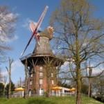 988590_windmill