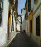 740572_street_cordoba