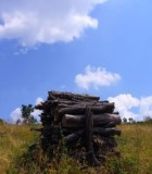 logs-and-sky-bkk-national-park-hungary-579274-m