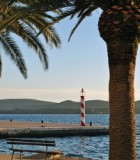 palms-and-lighthouse-in-tivat-montenegro-1341561-m