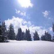 Lyžovačka a letné aktivity v rakúskom Flachau