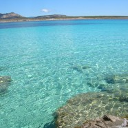 Stintino na Sardínii sa pýši bielym pieskom a čistým morom