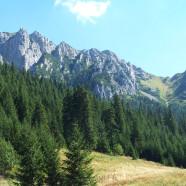 Atraktívne vysokohorské prostredie v Kościelisku