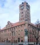 gothic-town-hall-in-the-city-of-teutonic-order-975084-m