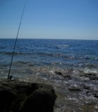 sea-fishing-1434733-m