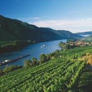 Čo sa oplatí vidieť a kde sa ubytovať v údolí Wachau?